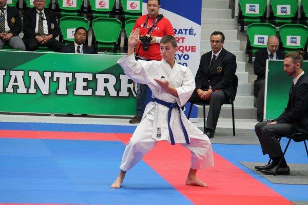 45Th Wado Kai European Championship PARIS 3/4 Nov 2017