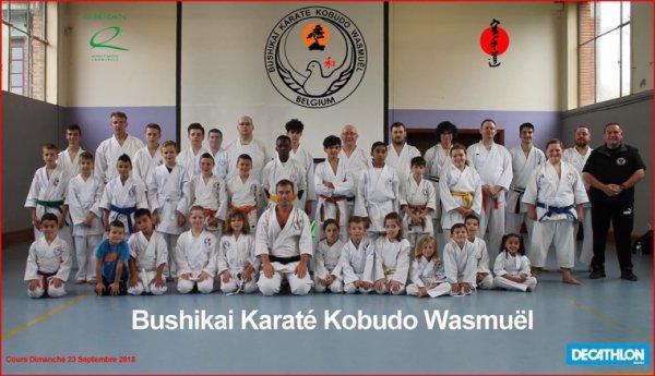 Bushikai Wasmuel Dojo