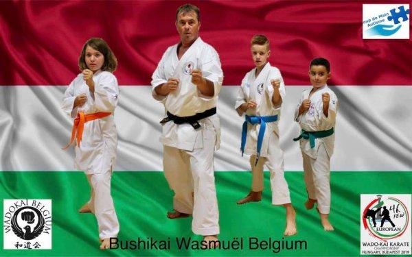 Stage préparatoire au championnat d'Europe de Karaté Wadokai 2019 à Budapest en Hongrie