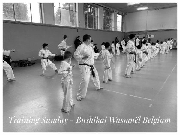 Entraînement Wado-Ryu et passages de grades 2 Février 2020
