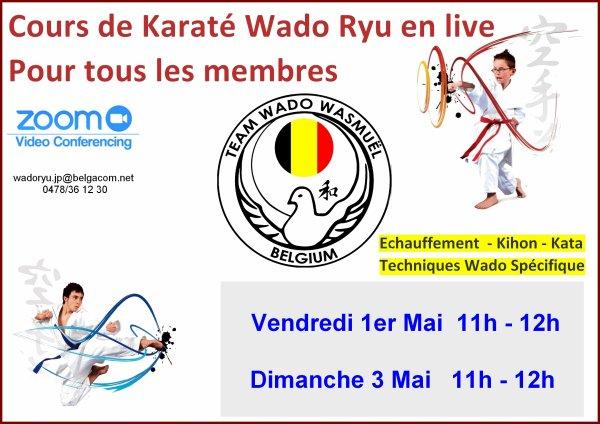 Cours Wado Ryu en live