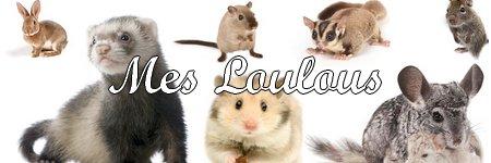 Mes Loulous