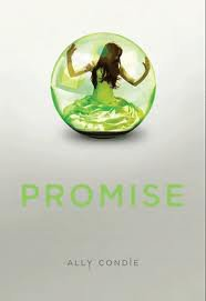 Promise de Ally Condie