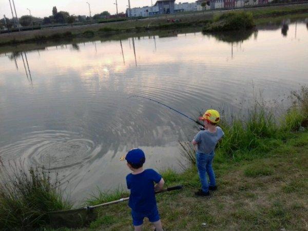 Mes deux Fisher boy carpe et blanc