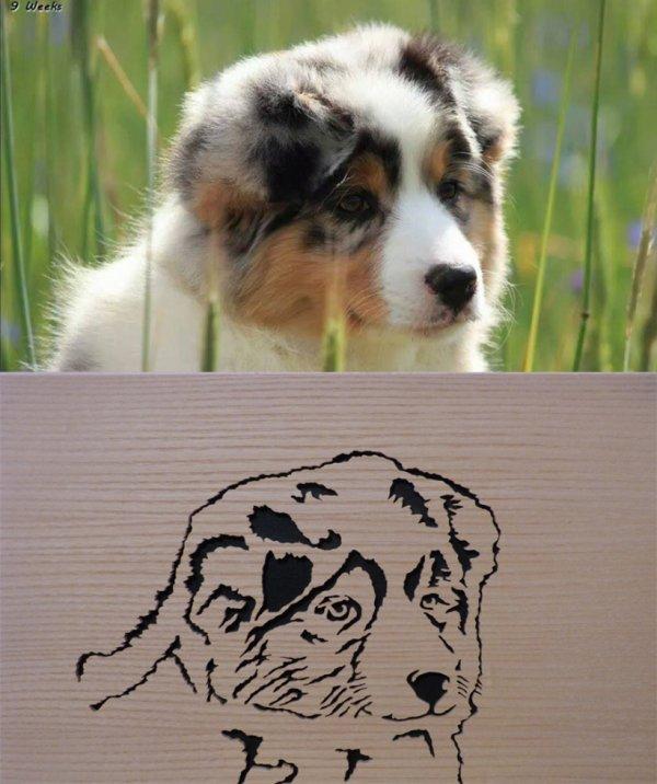 portrait de chien chantourné en bois