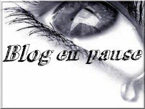 Blog en pause...
