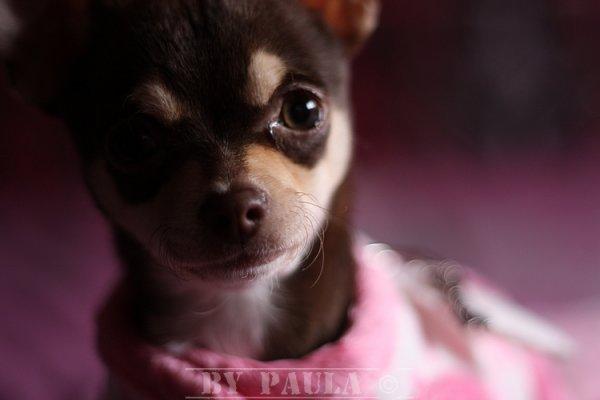 Ma princesse 4 mois !