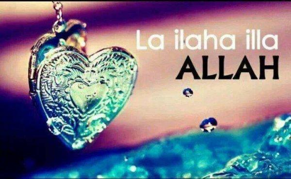 LA iiLLAHA iiLA ALLAH MOHAMED RASSOUL ALLAH <3 <3