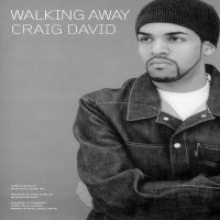 http://www.ukmp3music.co.uk / Walking Away (2010)