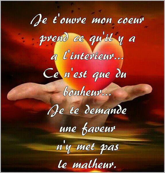 NE SURTOUT PAS LE BRISER!!!!!!!!!