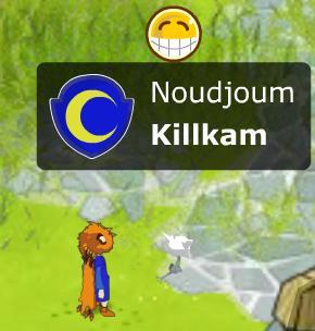 Killkam