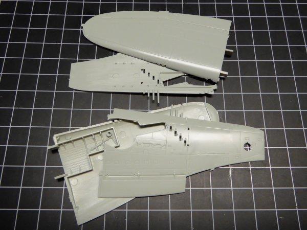 P47M POL 010
