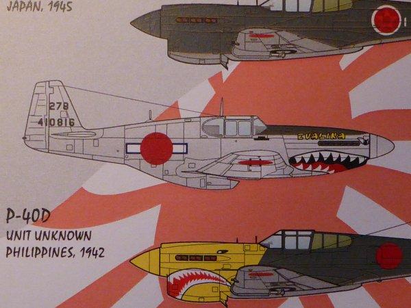 P51C JAP 001
