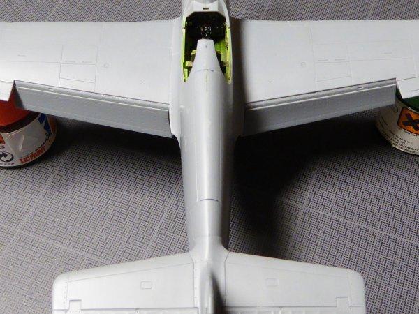 P51C JAP 013
