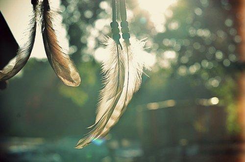 La vie est une loterie, même si tu gagnes au final tu perds la vie.  [MC Solaar]