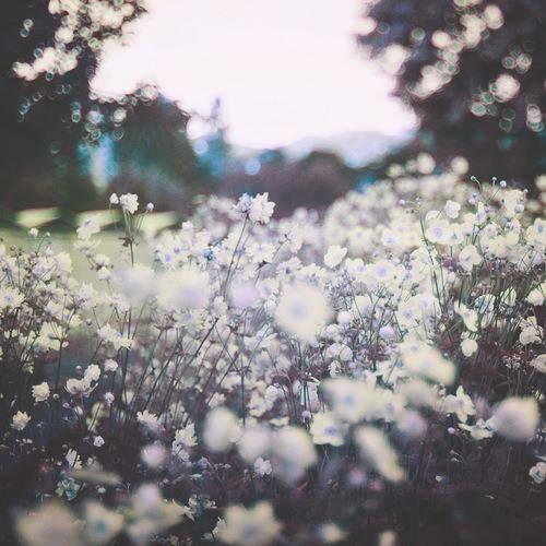 """""""On passe toute notre vie à attendre que quelque chose se passe, et la seule chose qui passe, c'est notre vie…"""""""