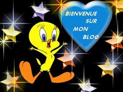 Je te présente mon blog