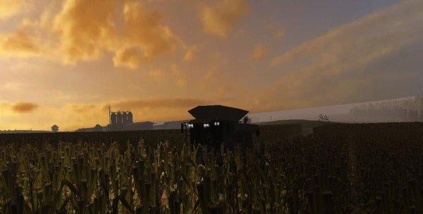 Moisson du maïs