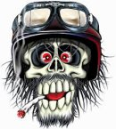 Photo de skullvente