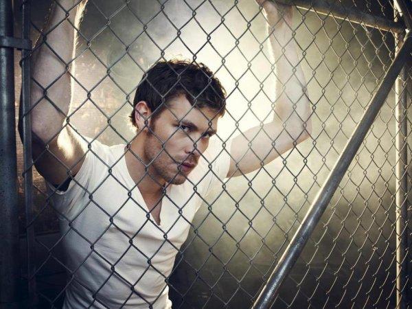The Vampire Diaries saison 4 : Klaus n'était pas censé survivre !