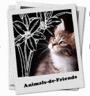 Photo de Animals-de-Friends