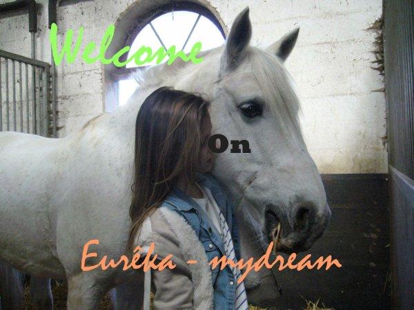 Bienvenue !↓