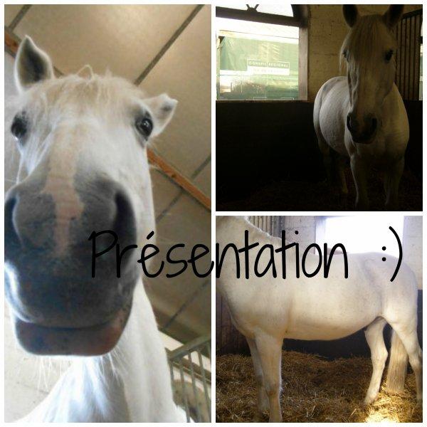 Présentation du poney qui a pour but de me faire sourire <3