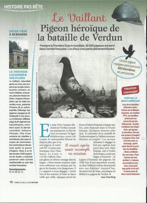 Le Vaillant !!Pigeon héroique de la bataille de Verdun!!!