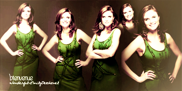 Welcome In The World Of Emily Deschanel