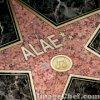 alae-generation-fans