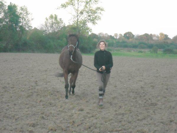 Je veux dresser vite mon cheval pour cela je vais aller doucement