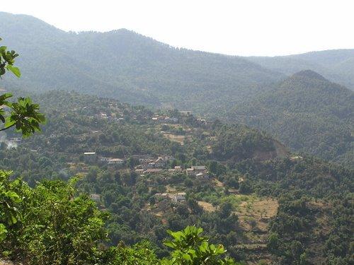 toujour dans mon village