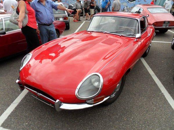 5884. jaguar