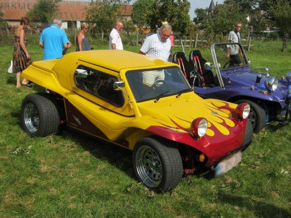 5996. buggy
