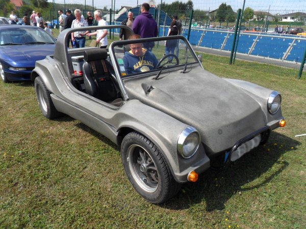 6050. buggy