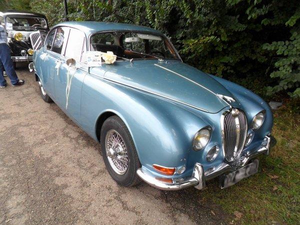 6168. jaguar