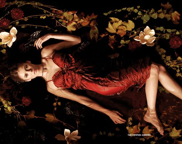 (Re)Découvrez un magnifique photoshoot promotionnel de Vampire Diaries pour la Saison 2.