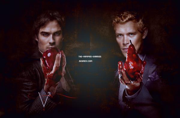 (Re)Découvrez des photos promotionnelles pour la troisième saison de The Vampire Diaries.