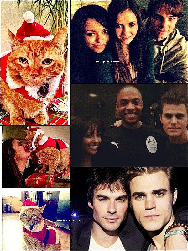 Découvrez une nouvelle photo promo de Vampire Diaries pour la Saison 4 du nouveau triangle amoureux.