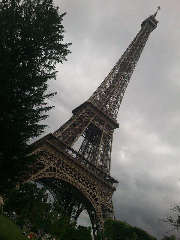 I løve Paris
