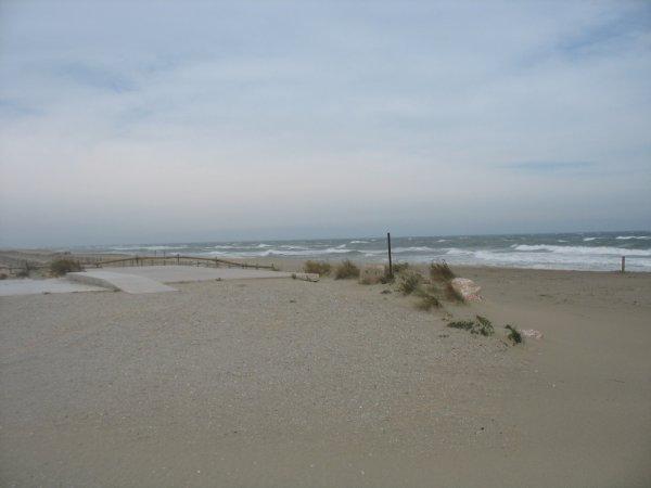 blokos torreilles  plage