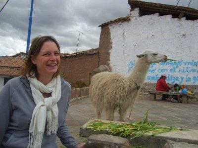 Cusco, premier lama