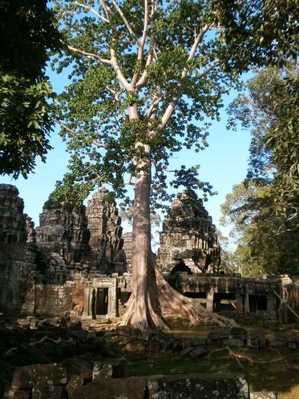 Angkor...part 1