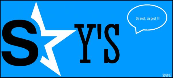 L'organisation des sky's