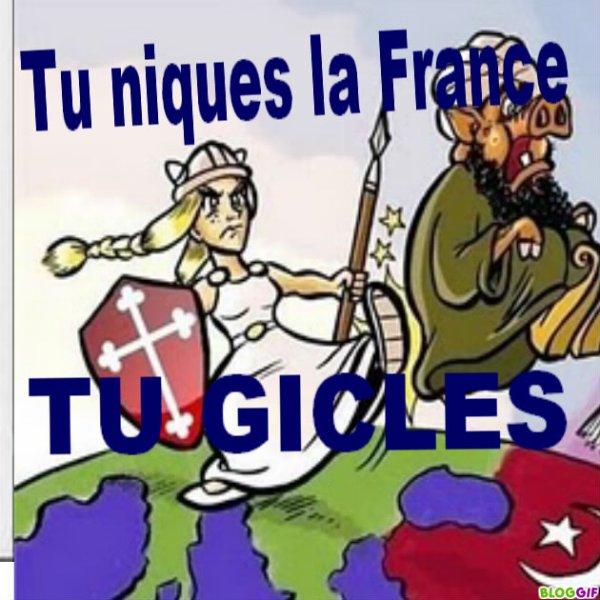 j aime la FRANCE
