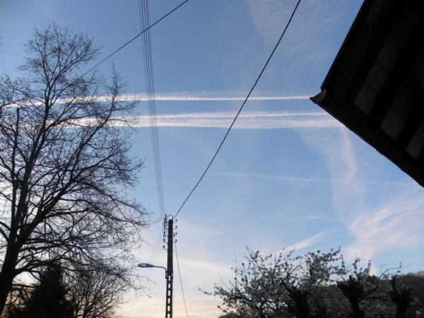 suite chemtrails