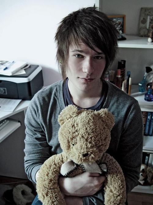Teddy, votre ami depuis l'enfance
