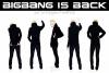 BIG BANG IS BACK TONIGHT ; Toutes les NEWS ! (du 15 au 24.02.11)
