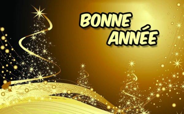 Bonne année à tous et bonne santé bisous <3
