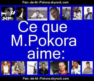 voici ce que M.Pokora aime: